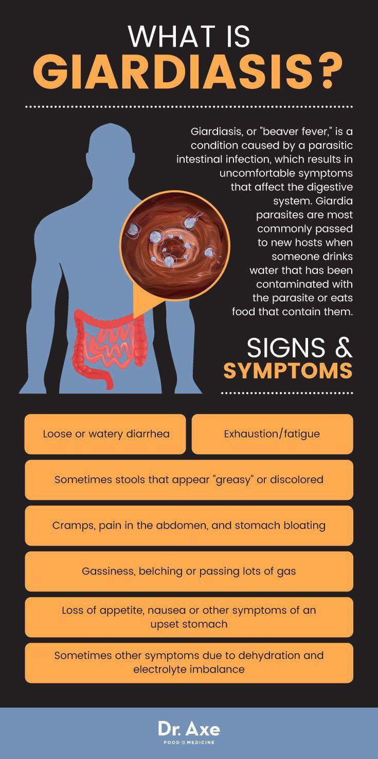 Giardia infection in humans. Az élősködők kiürítése Giardia infection natural treatment