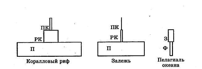 Paraziták szimbólumok saprotrofák