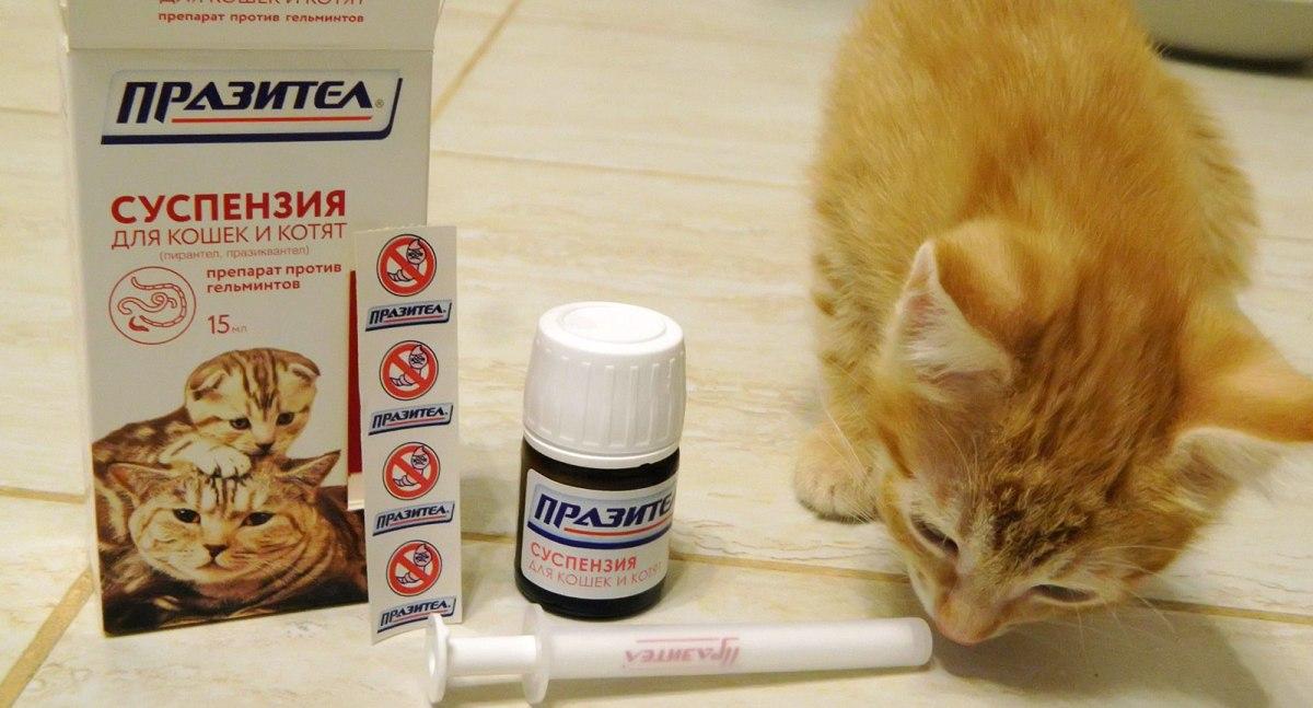 Gyógyszerrendelés