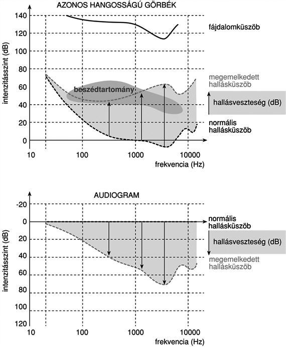 a helminthiasis füzet megelőzése