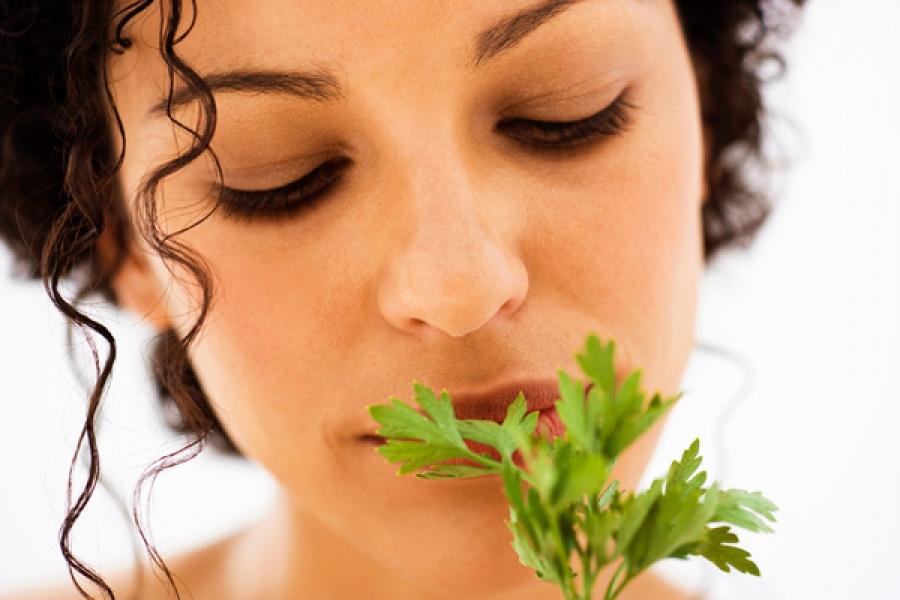 hogyan lehet megszüntetni a lehelet szagát