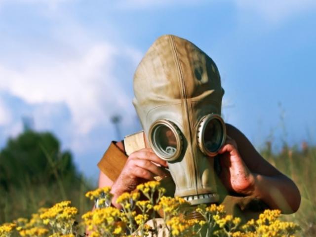 helmint terápiás allergiák hogyan lehet a férgeket gyógynövényekkel kezelni