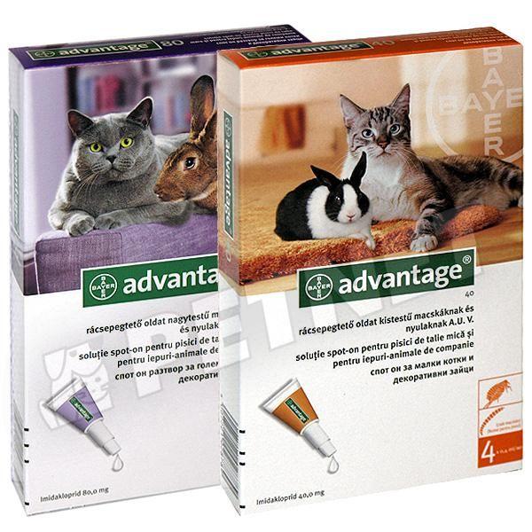 Dehinel Cat féreghajtó tabletta 30 db