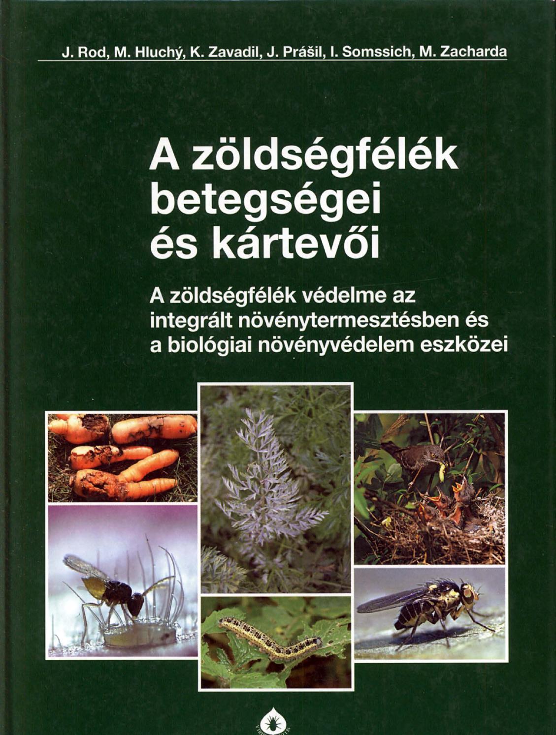 Nemocid férgek gyógyszere - Platyhelminthes turbellaria