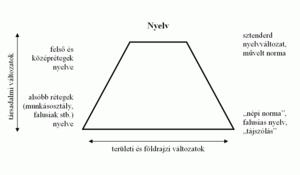 Nyelvünk főbb rétegződései, főbb nyelvváltozatok