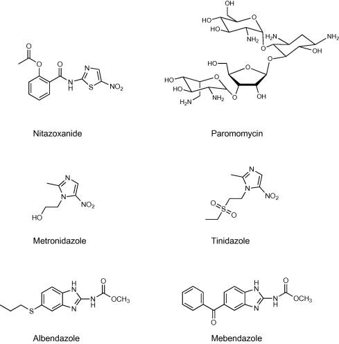 Melyik gyógyszert jobb inni a giardiasisból