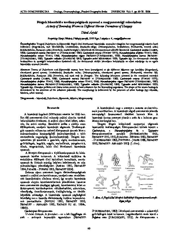 a szalagféreg fejlődési útjai