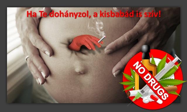 prokontra.hu - Milyen veszélyt jelentenek a bélférgek ránk, emberekre és kedvenceinkre (zoonózis)?