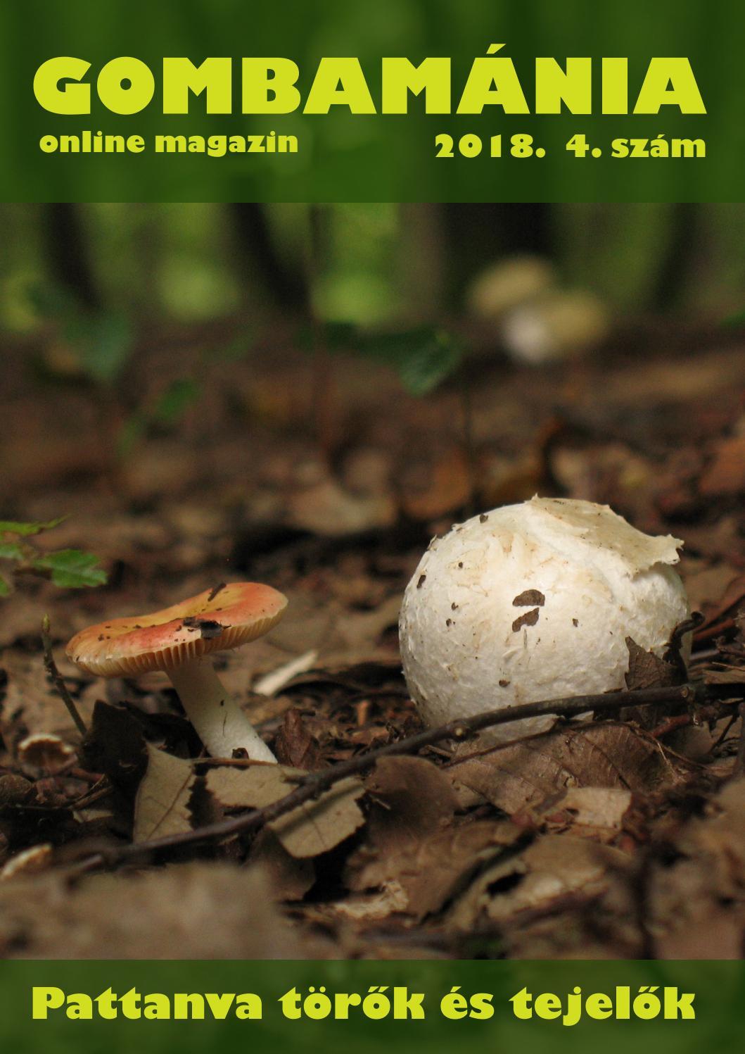 gombák és paraziták közé tartozik a kosz