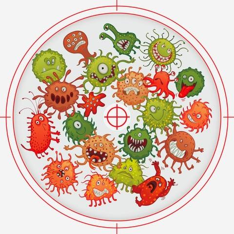 Lyme-kór - Borrelia és társfertőzések, Lyme-MSIDS, gyógymódok, diéta