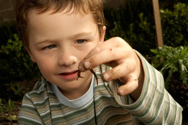 Mik azok a bélférgek? - Férgek gyermekek kezelése hogyan kell kezelni