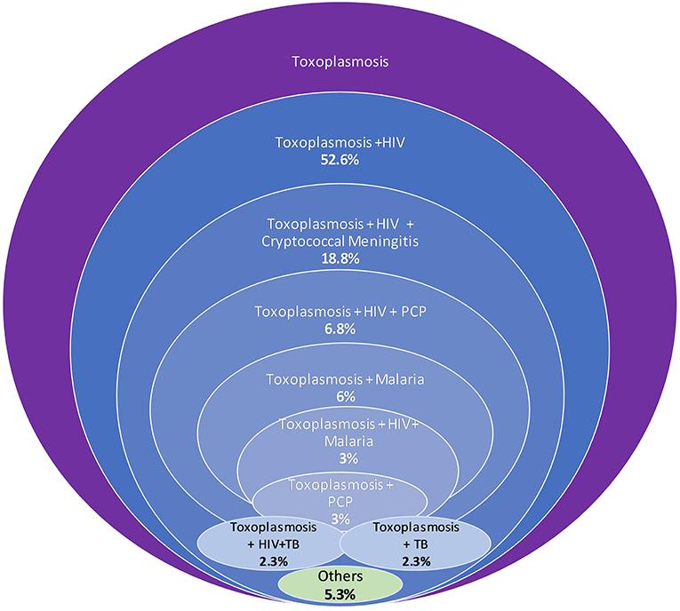 Toxoplazmózis tünetei és kezelése