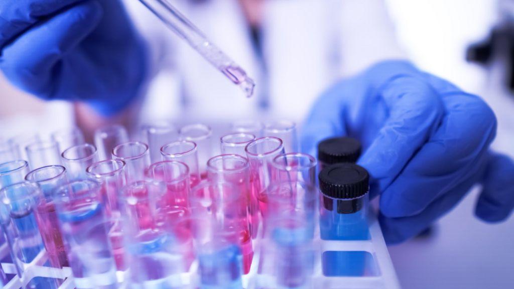 a Plasmodium malária gazdaszervezete melyik gyógyszer a férgek számára jó