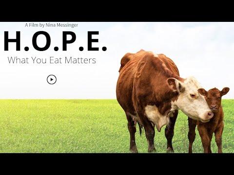 férgek készítményei szarvasmarhák számára