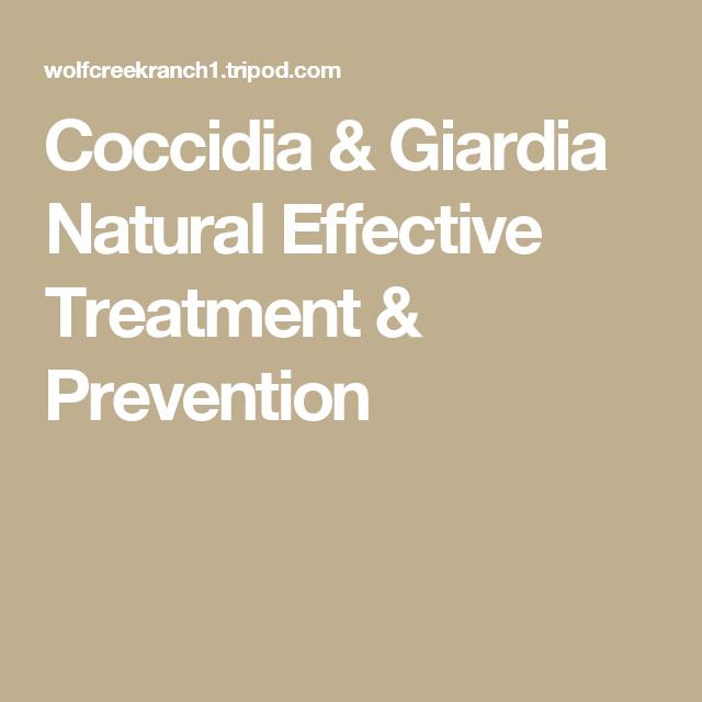 Laktózérzékenység – Wikipédia, Giardia treatment baby