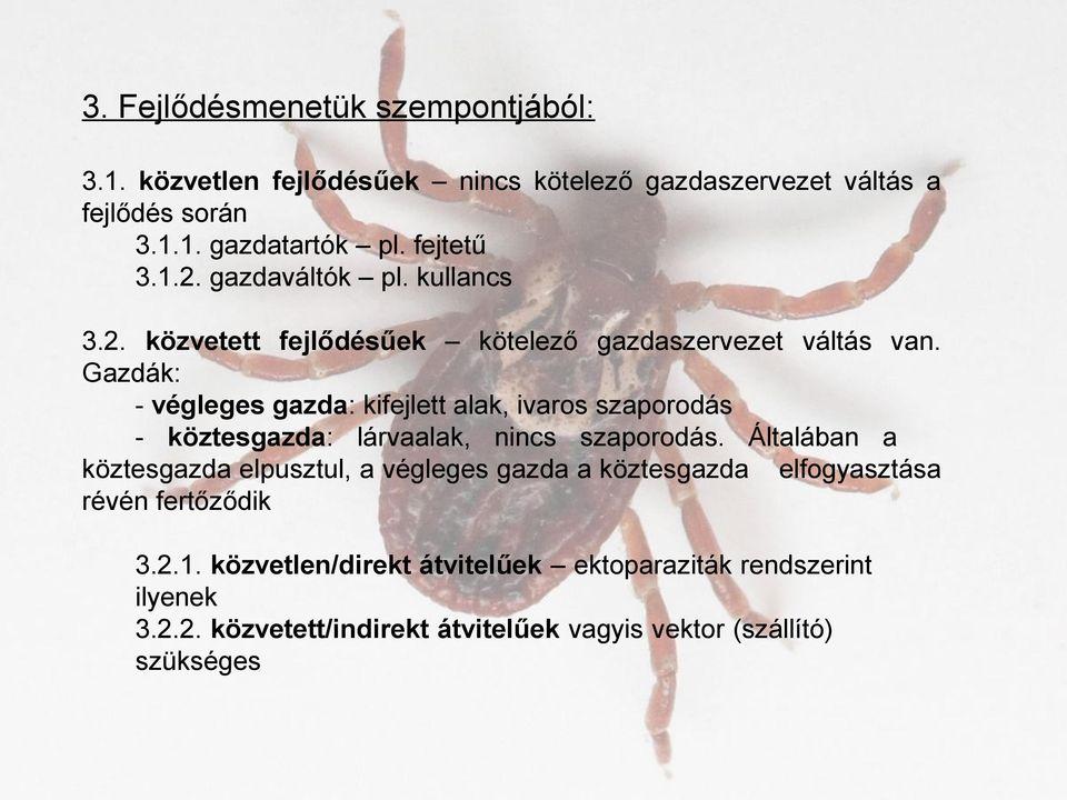Paraziták és gazdaszervezetek az édesvízi élővilágban. A GAZDA PARAZITA KAPCSOLAT