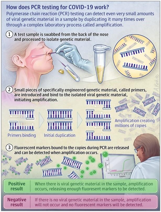 Tuberkolozis megelőzés