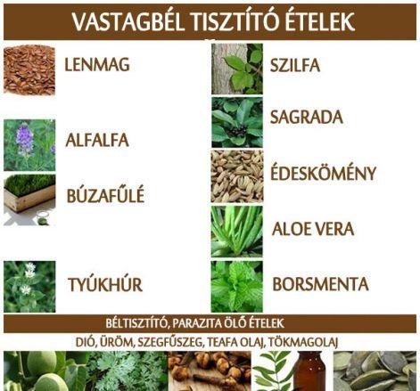 parazita megtisztítása és féreg tisztítása & detox - prokontra.hu