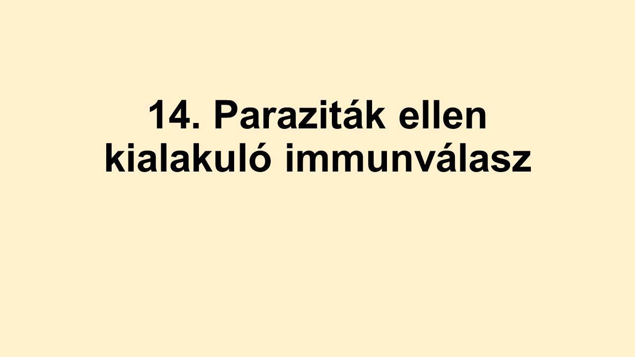 immunválasz a paraziták ellen