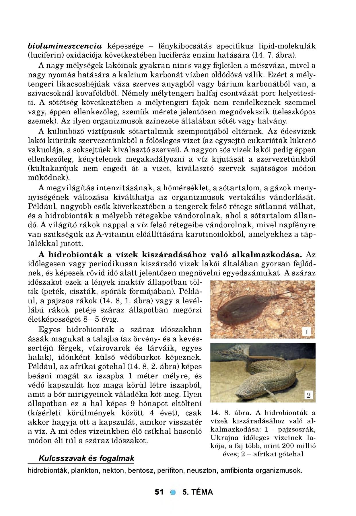 AgrárUnió - Szádor, az agresszív élősködő – A védekezés lehetőségei a napraforgó-termesztésben
