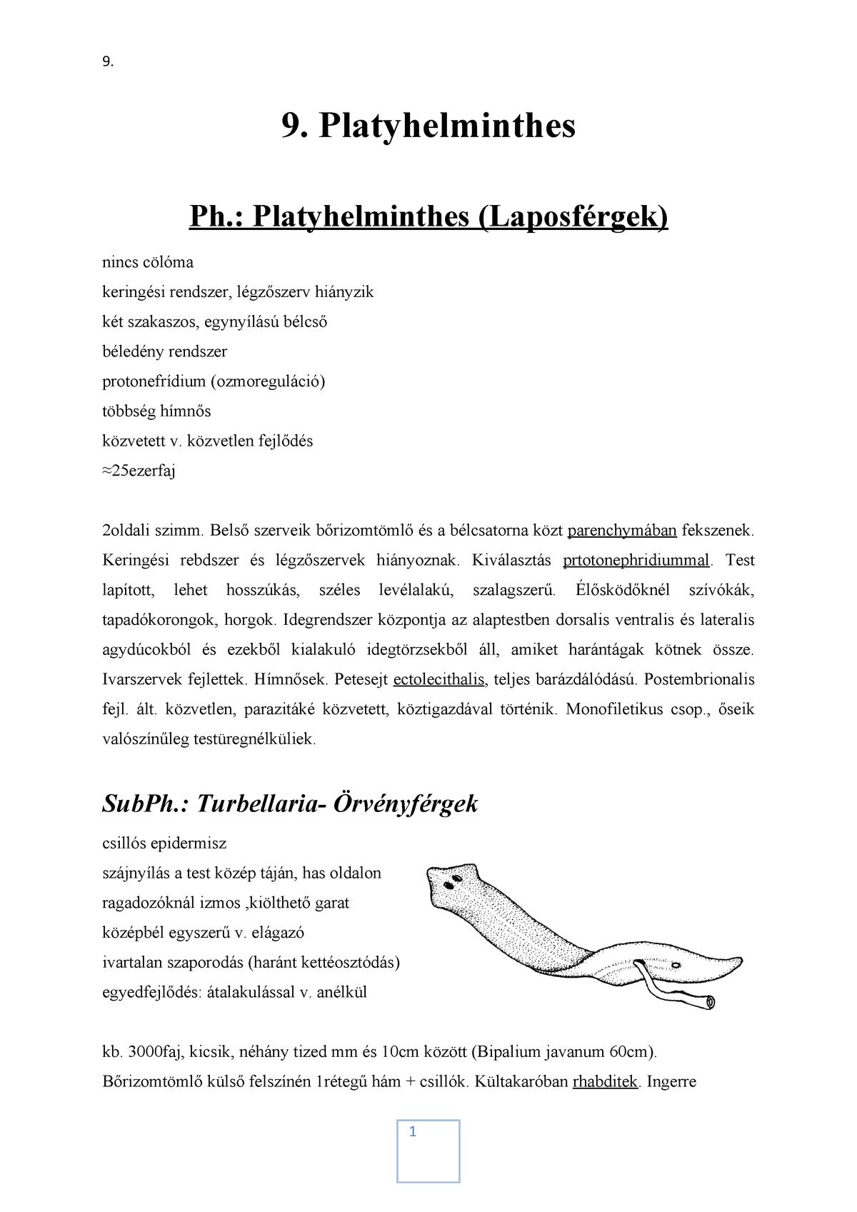 A pinworm fertőzés leggyakrabban lehetséges