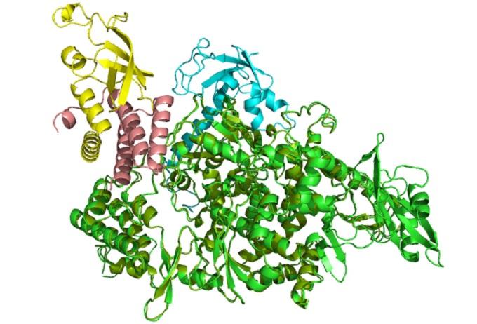 Számos koronavírus elleni szer tesztjét kezdtek már el   National Geographic