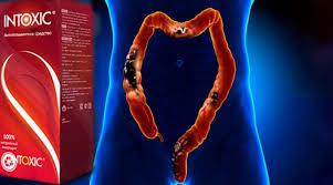 giardiasis kép féregölő gyógyszer