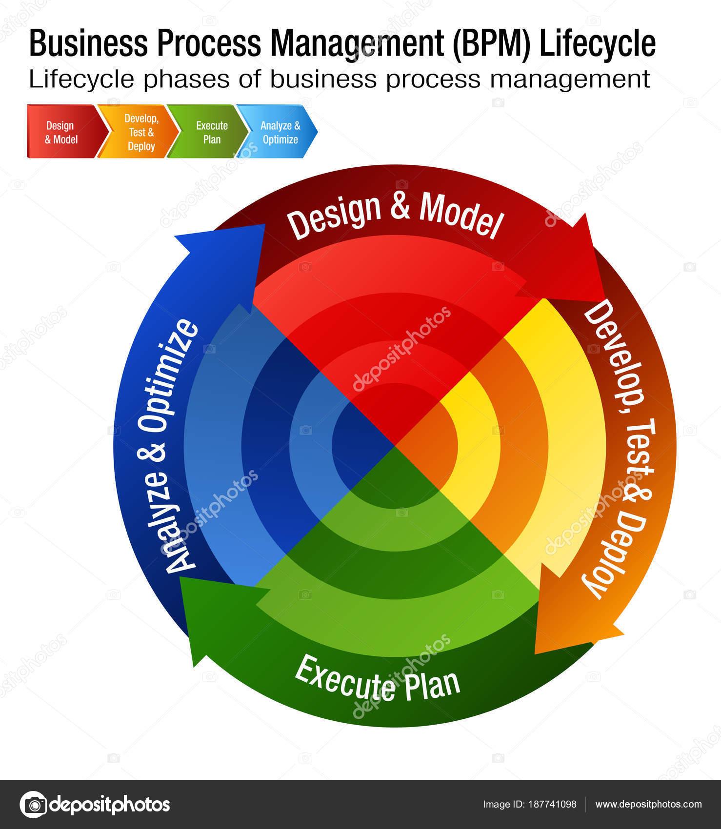 a szalagféreg diagram fejlesztési ciklusa