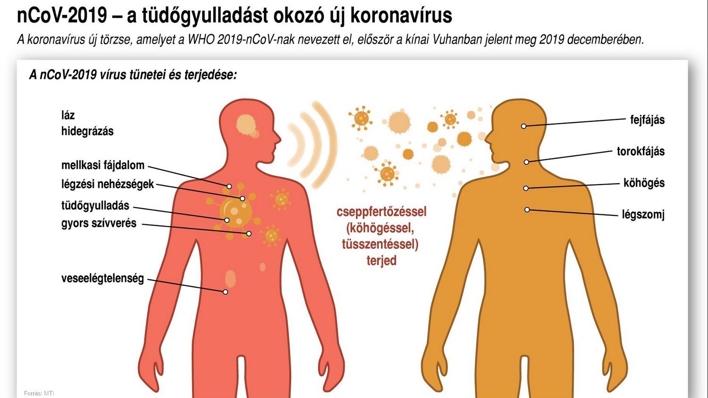 a teniasissal való fertőzés módja