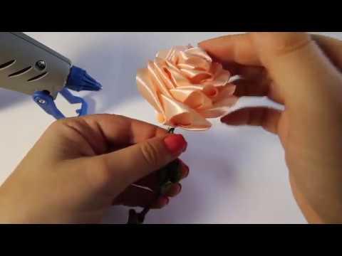 hogyan lehet megszabadulni a rózsa parazitáitól