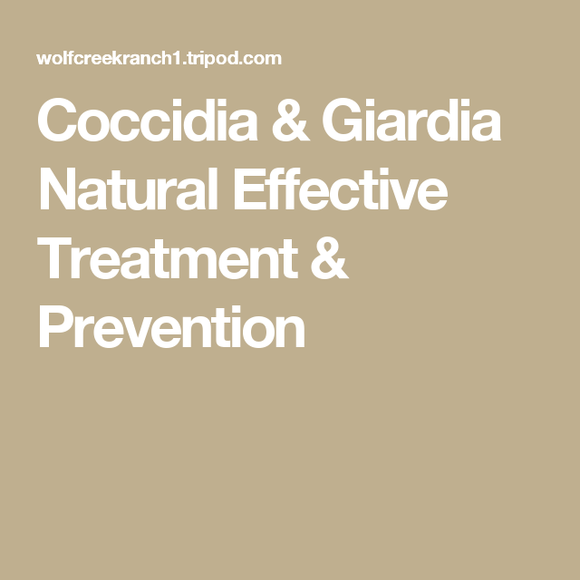 giardia treatment baby