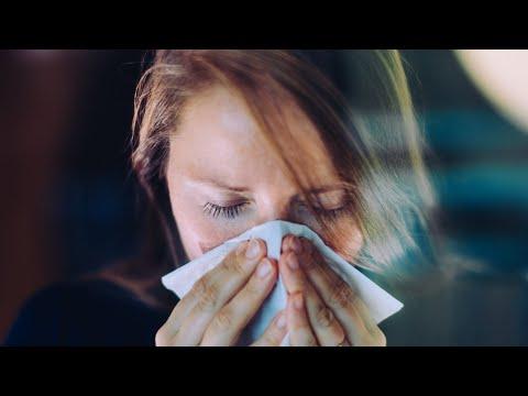 ha folyamatosan szagol a szájból bika szalagféreg hossza és szélessége