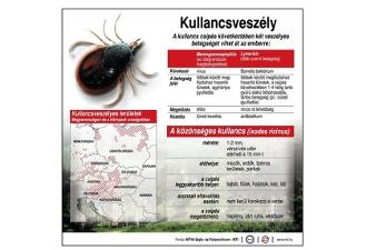 ahol laposférgek élnek a parazita gyógyszer neve