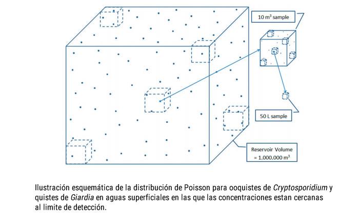 giardia y cryptosporidium en agua potable