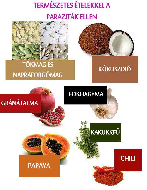 gyógynövények a paraziták receptje