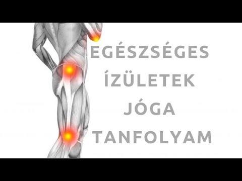 Élősködők: Bélféreg tünetei Emberi kerek féreg szimmetria