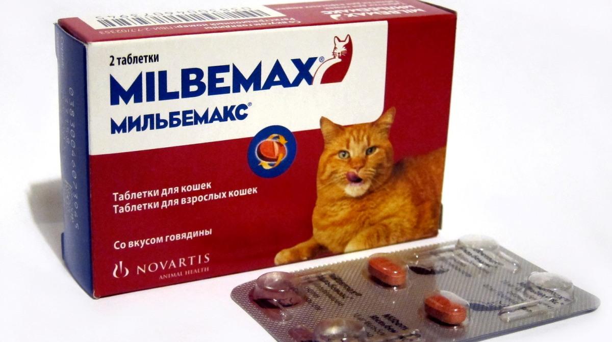 Férgek milyen tablettát