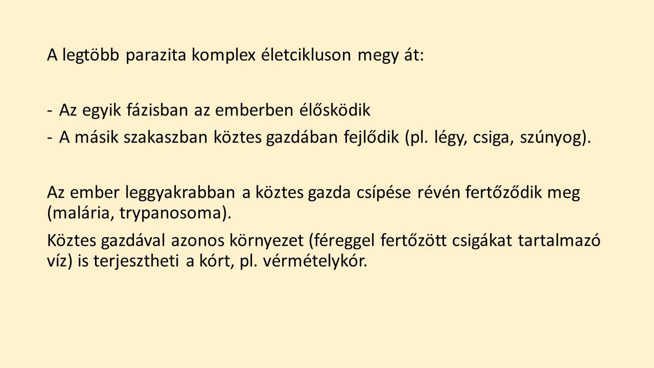 12 biztos jele annak, hogy parazita van a testedben | prokontra.hu