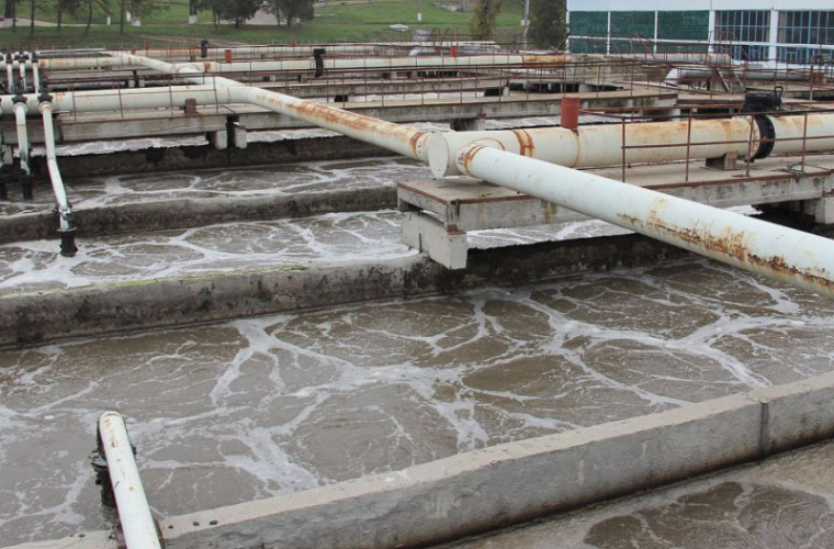fertőtlenítő szennyvíziszap hogyan lehet kezelni a férgeket borjúban
