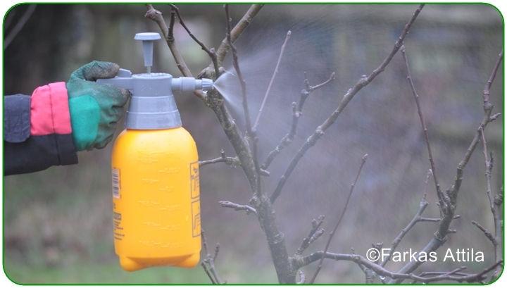 szodabikarbona férgek ellen parazitakezelés metronidazollal