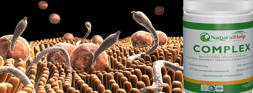 bél paraziták elleni gyógyszerek amway parazita kezelés