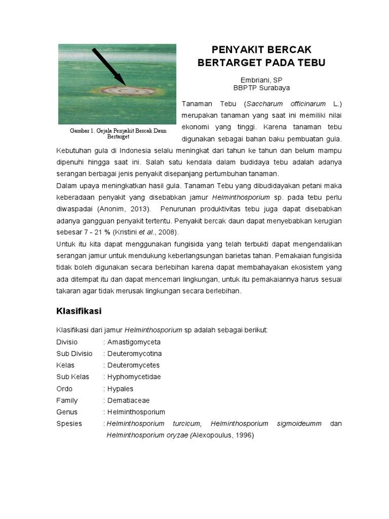 taksonomi helminthosporium oryzae gyurusférgek emesztese