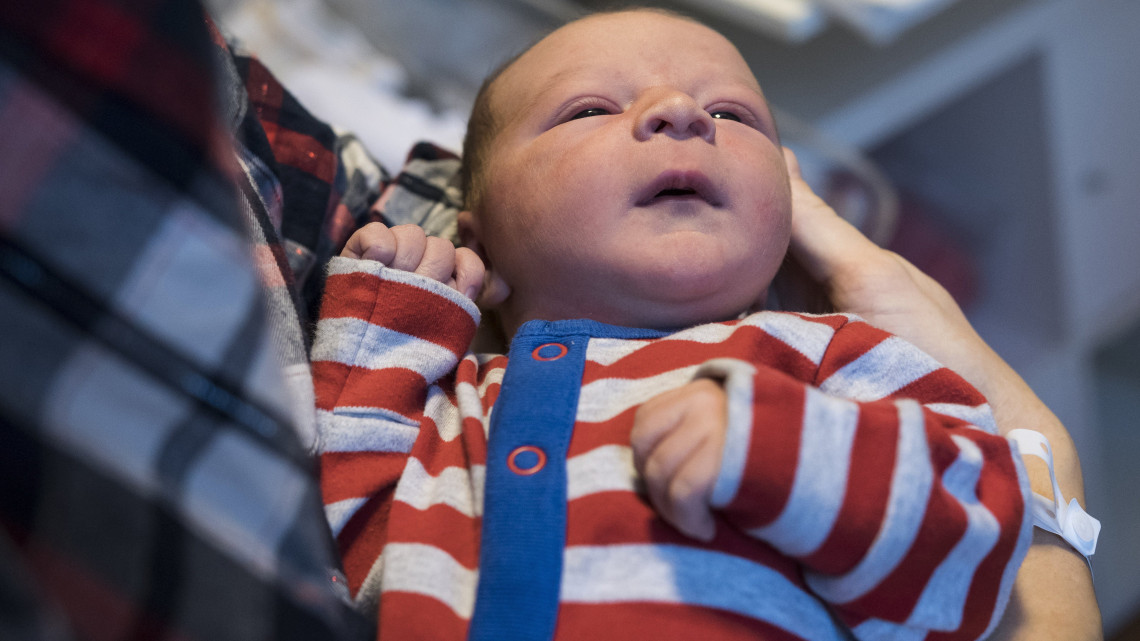 Bélféreg: okok, tünetek, kezelés - Férgek kezelése 7 hónapos gyermeken