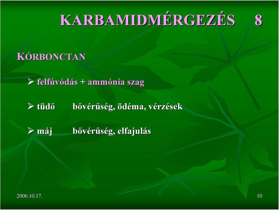parazitákból és férgekből származó gyógynövényekből