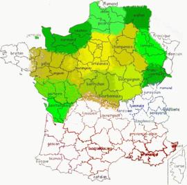 trichocephalosis földrajzi eloszlása féregtelenito tabletta