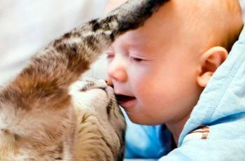 gyermekek férgeinek kezelése