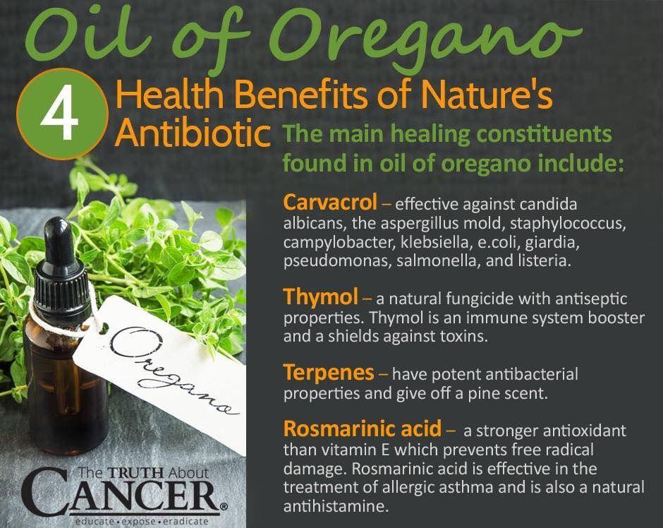 giardia oregano oil kezeljük a gyermekek férgeinek tüneteit és kezelését