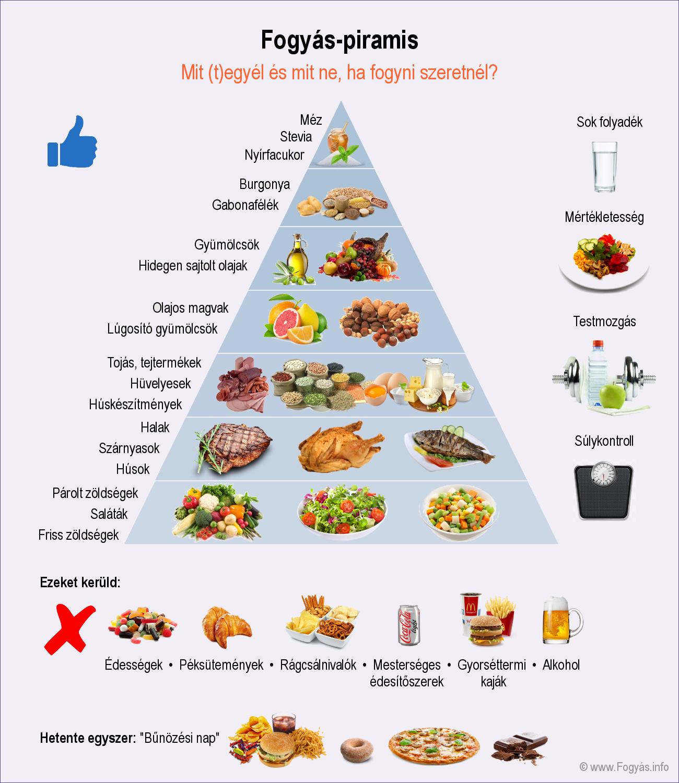 Giardia dieta