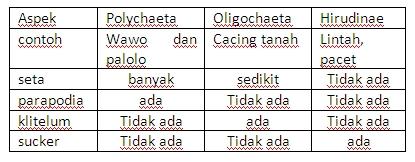 Kelas dalam filum nemathelminthes - prokontra.hu