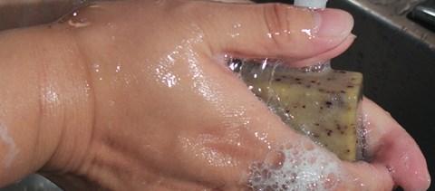 ankilostomiasis fertőző betegségek